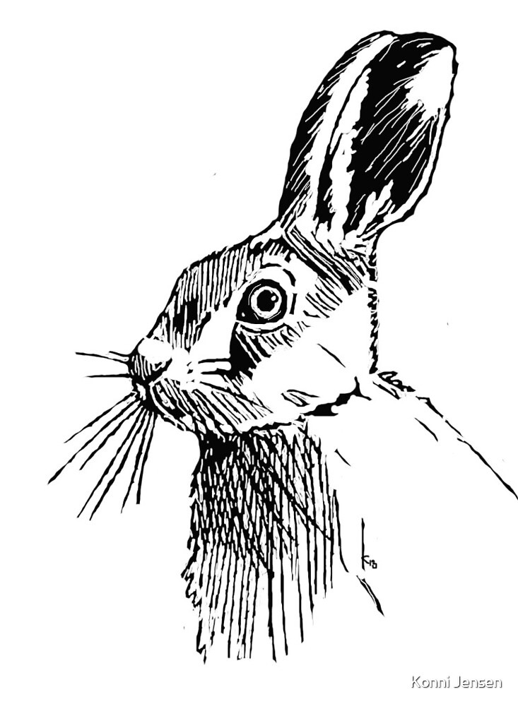 Etched Hare by Konni Jensen