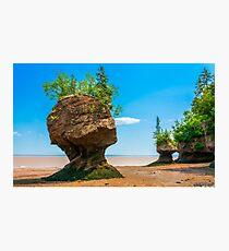 Hopewell Rocks, New Brunswick Canada Photographic Print