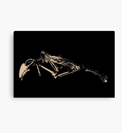 fly no more Canvas Print