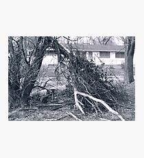 Hideout Photographic Print