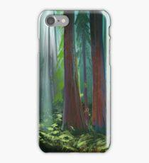 Landscape Study 10 iPhone Case/Skin