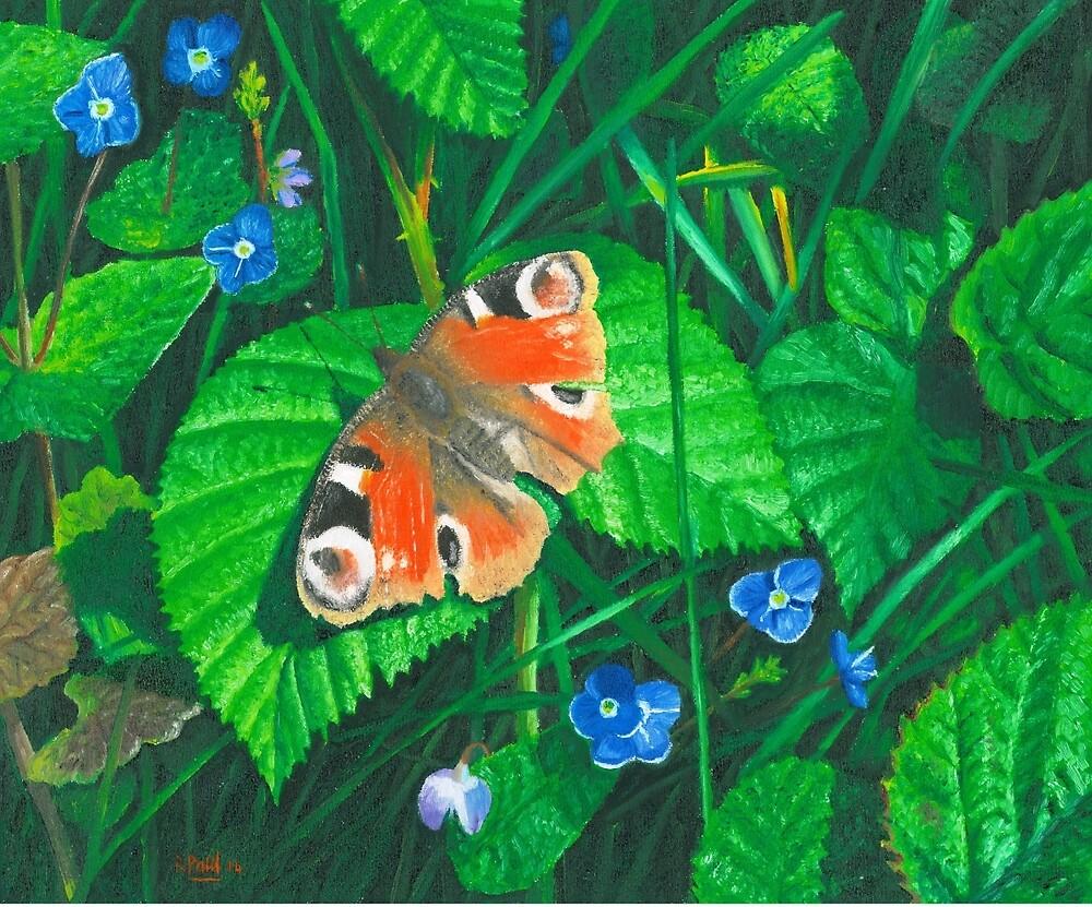 Peacock butterfly by Richard Paul