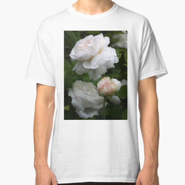 Englisch Rose Winchester Kathedrale Classic T-Shirt