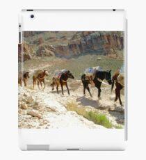 Equine Enterprise iPad Case/Skin