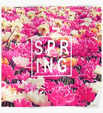 """Pretty """"Spring"""" Typography & Pink & Yellow Flowers Poster"""