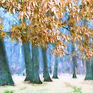 Tones of Winter by John Rivera