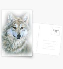 Wolf Postcards