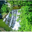 Big Falls at Burgess Falls State Park by Rayven Collins