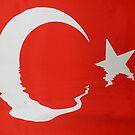 Fun Turkish Flag by Zoe Marlowe