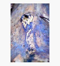 Iridescent Photographic Print