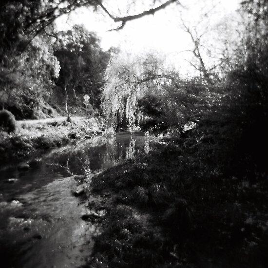 Merri Creek by KerrieMcSnap