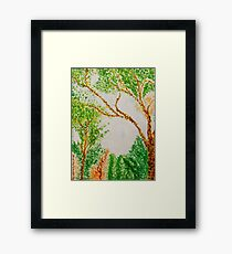 Trees Framed Print