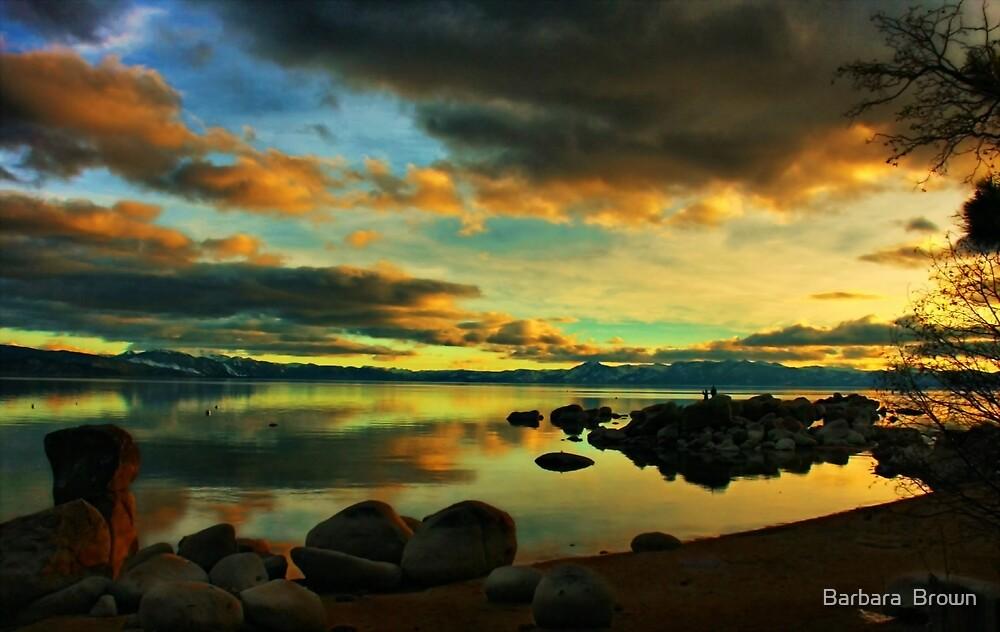 Tahoe Meditations by Barbara  Brown