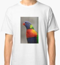 Colourful  Classic T-Shirt