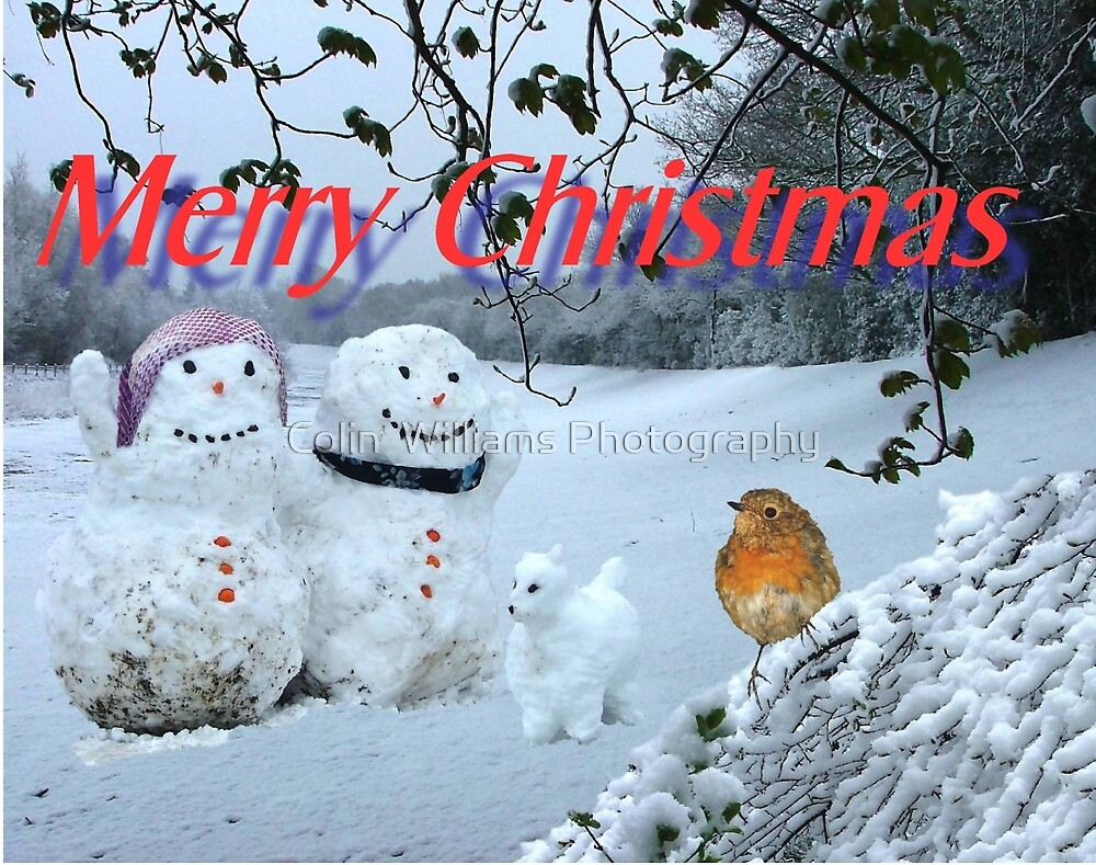 Snow Family Christmas Card by Colin  Williams Photography