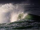 Winter Waves in Waikiki by Alex Preiss