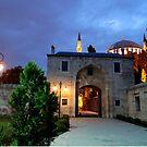 Suleymaniye Mosque in the Evening by Zoe Marlowe