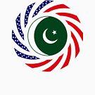 Pakistani American Multinational Patriot Flag Series by Carbon-Fibre Media