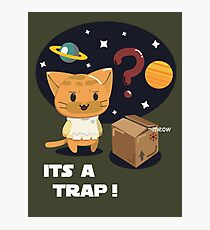 Its a Cat Trap! Photographic Print