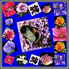 Honey Bee and Summer Flowers Collage von BlueMoonRose