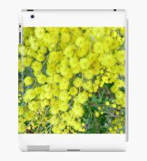Acacia Dealbata (Silver Wattle) iPad Case/Skin