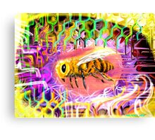 Vee Bee Canvas Print