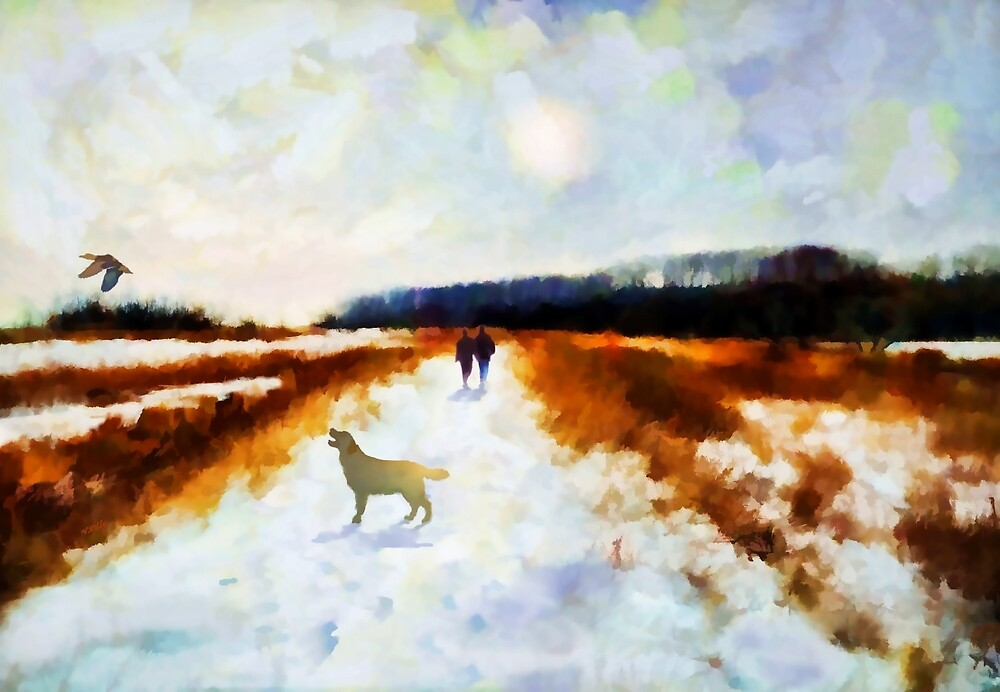 Broadland walk  by Valerie Anne Kelly