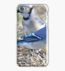 Jays iPhone Case/Skin