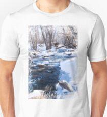 Bear Creek Lake State Park, Morrison Colorado Unisex T-Shirt