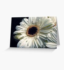 White LoVe Greeting Card