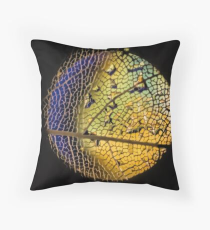 Lamp That Guides the Lens Throw Pillow