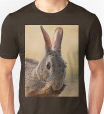 Eastern Cottontail Rabbit Preening  T-Shirt