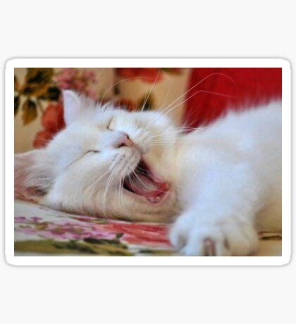 Cute Portrait Of A Yawning Van Cat Sticker