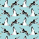 Oyster Catcher Pattern by Louise Norman