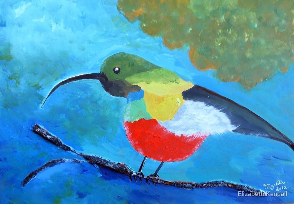 Painted honeybird by Elizabeth Kendall
