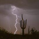 Giant Saguaro Cactus  Desert Lightning Strike by Bo Insogna