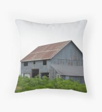 Kirkwood Metal Throw Pillow