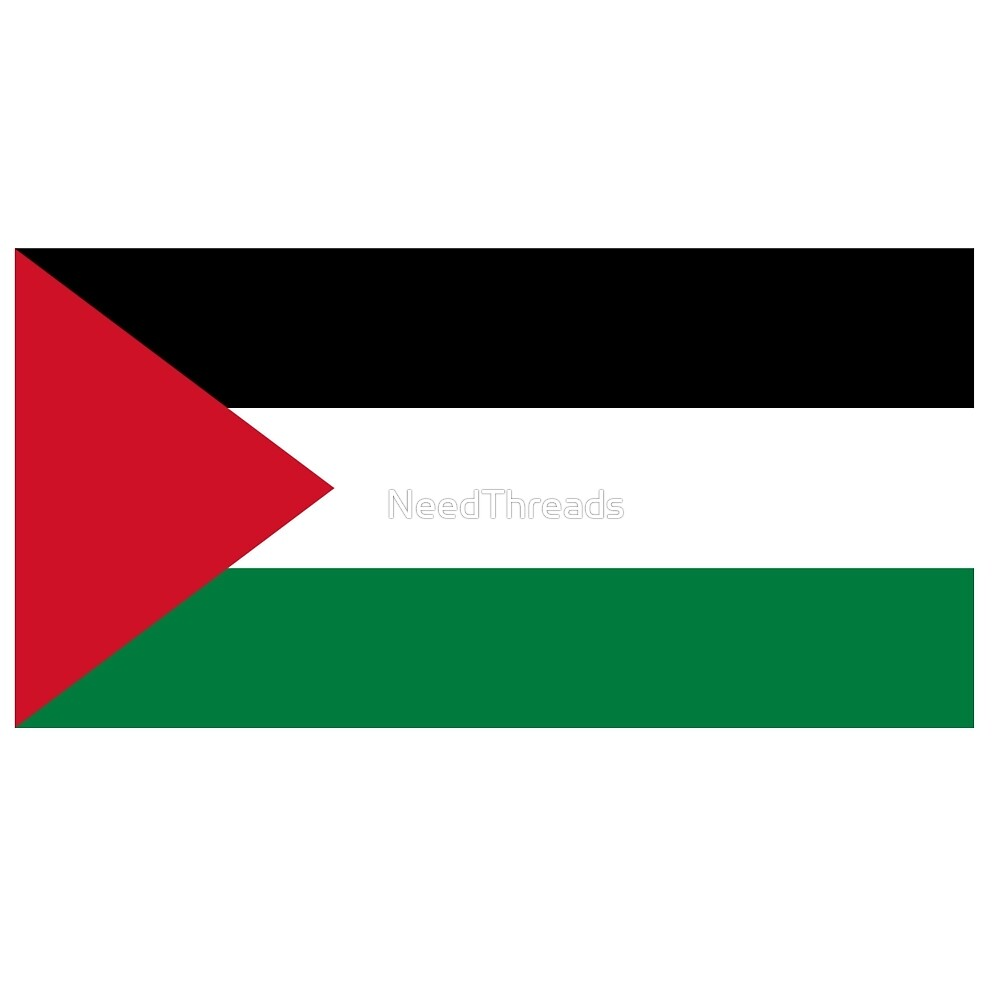 Palestine Flag by NeedThreads