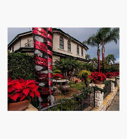 Christmas in a Naples Garden Photographic Print