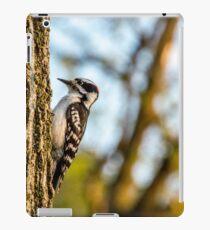Downy Woodpecker on Tree iPad Case/Skin