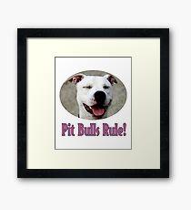 Pit Bulls Rule! Framed Print