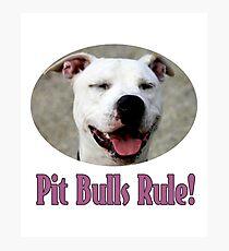 Pit Bulls Rule! Photographic Print