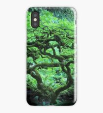 Butchart Gardens 1 iPhone Case/Skin