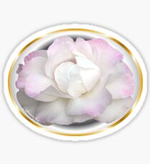The White Rose ~ Purity and Secrecy Sticker
