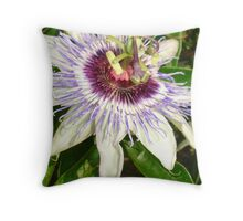 Passiflora Close Up With Garden Background Throw Pillow