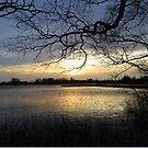 Sunrise by Lake Brunstingerplas by ienemien
