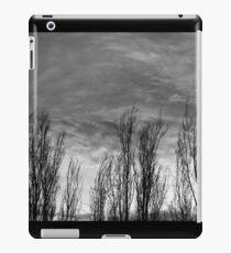 Dark San Jose Skies iPad Case/Skin