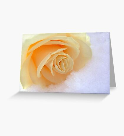 A rose on my heart has melted the snow Greeting Card