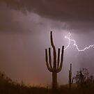 Saguaro Southwest Desert Lightning Air Strike  by Bo Insogna