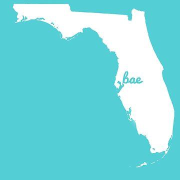 Tampa Bae White by vdschiro